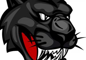 Riceville wildcat logo